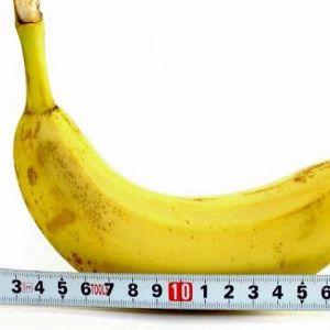 Ідеальний розмір пеніса
