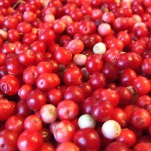 Чи є брусниця (ягоди, листя) сечогінним засобом?