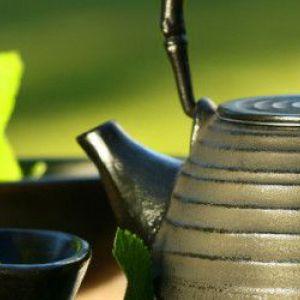 Як оцінити користь зеленого чаю по достоїнству