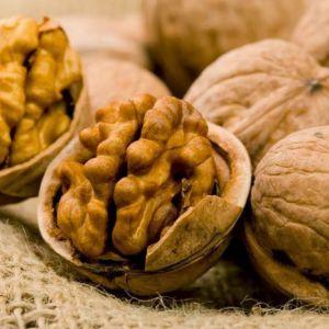 Масло волоського горіха: корисні і шкідливі властивості