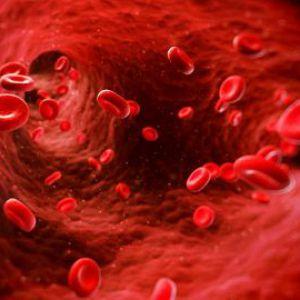 Очищення крові будинку