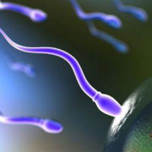 Олігоастенотератозооспермія: причини, лікування, профілактика