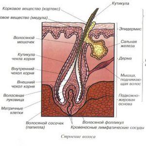 Сучасні методи лікування прищів