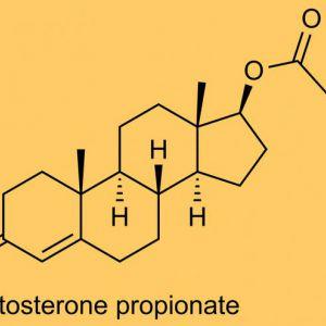 Вплив тестостерону на організм