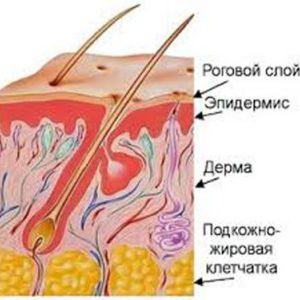 Усе про лікування фурункула, фурункульозу і карбункула